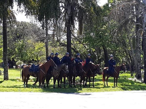 2020 03 03 cavalaria ms