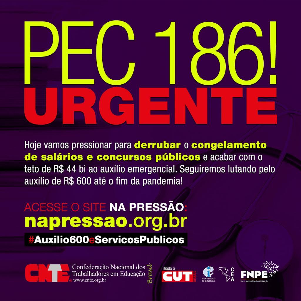 pec 186 urgente quinta