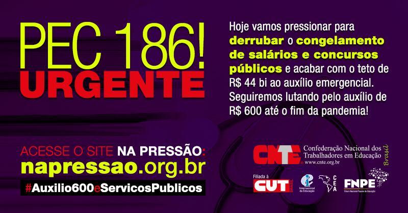 pec 186 urgente twitter